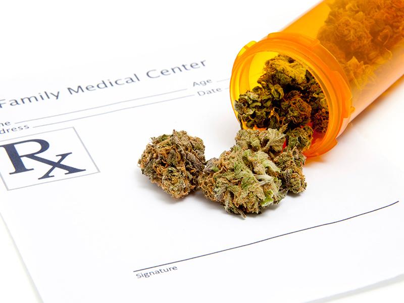 cannabis ad uso medico in Italia